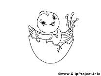 Coquille pâques image à imprimer  gratuite