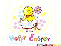 Poussin image gratuite - Pâques illustration