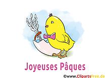Poussin images gratuites – Pâques clipart