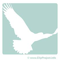 Colombe image gratuite - Pictogramme  illustration