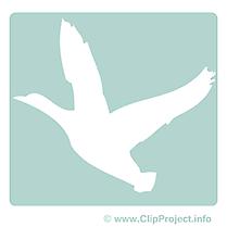 Cygne cliparts- Pictogramme images gratuites