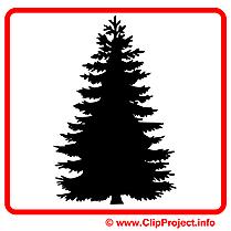 Sapin images gratuites – Pictogramme clipart