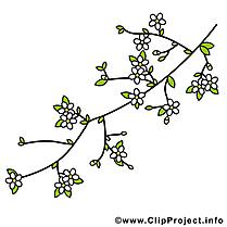 Cerisier image gratuite – Printemps clipart