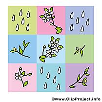 Décoration dessin gratuit - Printemps clip arts