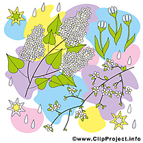 Feuilles clip arts gratuits - Printemps illustrations