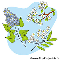 Floraison images - Printemps dessins gratuits