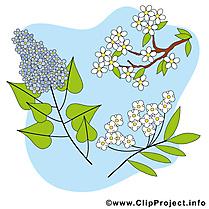 Floraison images - Printemps dessins gratuits