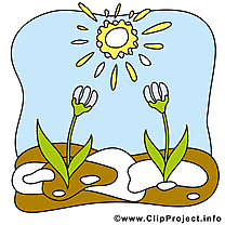 Perce-neige images - Printemps clip art gratuit