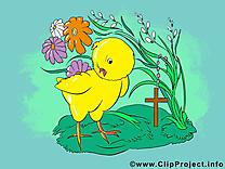 Poussin clip art gratuit - Pâques dessin