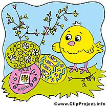 Poussin dessin gratuit - Pâques image