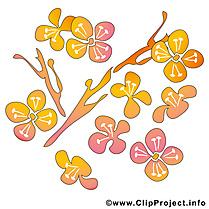 Printemps dessin - Fleurs cliparts à télécharger