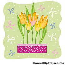 Tulipe dessin gratuit - Printemps clip arts