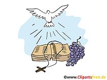 Bible dessins gratuits - Baptême clipart gratuit
