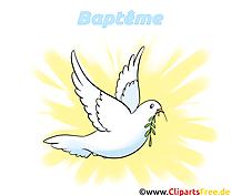 Colombe image gratuite – Baptême clipart