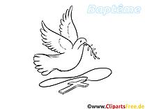 Pigeon dessin à imprimer - Baptême image