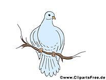 Branche illustration - Pentecôte clipart