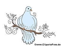Branche pigeon clip art Pentecôte image