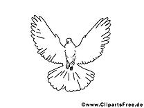 Colombe clip arts à imprimer - Pentecôte illustrations