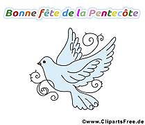 Colombe de la paix dessin gratuit à télécharger
