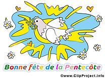 Colombe illustration - Pentecôte clipart