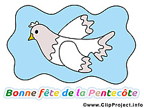Colombe image gratuite Pentecôte clipart - Kopie