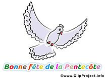 Dessins Pentecôte clipart gratuit