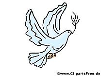 Feuille d'olivier clipart - Pentecôte dessins gratuits