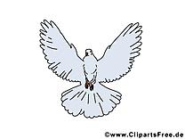 Pentecôte pigeon image à télécharger gratuite
