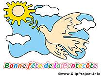 Pigeon clipart gratuit - Pentecôte dessins gratuits