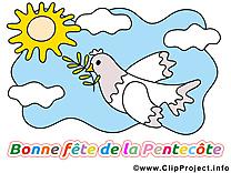 Pigeon dessin - Pentecôte cliparts à télécharger