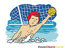 Water-polo clipart gratuit à télécharger