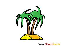 Palmier dessin gratuit- Île clip arts