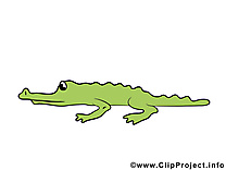 Alligator images – Animal clip art gratuit