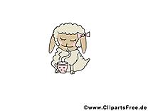 Brebis dessin – Animal à télécharger