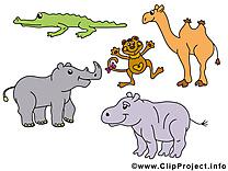 Clip art gratuit safari – Animal images