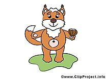 Écureuil dessin – Animal clip arts gratuits