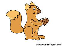 Écureuil images – Animal clip art gratuit