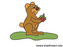 Framboise ours clipart – Animal dessins gratuits