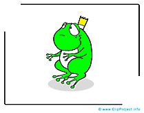 Grenouille clip art gratuit – Animal images