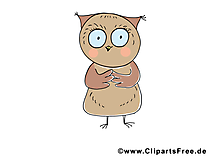 Hibou dessins gratuits – Animal clipart