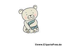 Livre ours images – Animal dessins gratuits