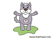 Loup image gratuite – Animal cliparts