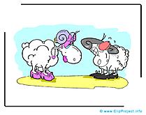 Moutons images gratuites – Animal clipart
