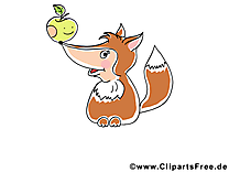 Renard dessin à télécharger – Animal images