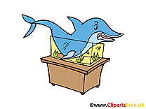 Requin clip art – Animal image gratuite
