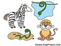 Safari image – Animal images cliparts